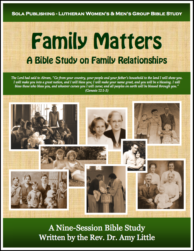 Family Matters - Participant Book W-1310