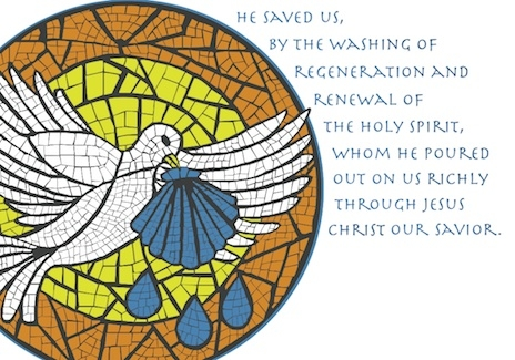 Baptism - Dove and Shell Card