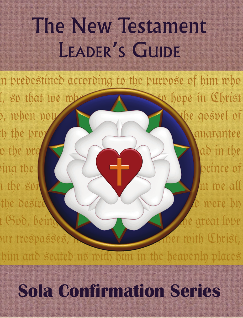 the new testament guide New testament study guides | a new series of study guides for the books of the  new testament each study guide contains an introduction to the book and.