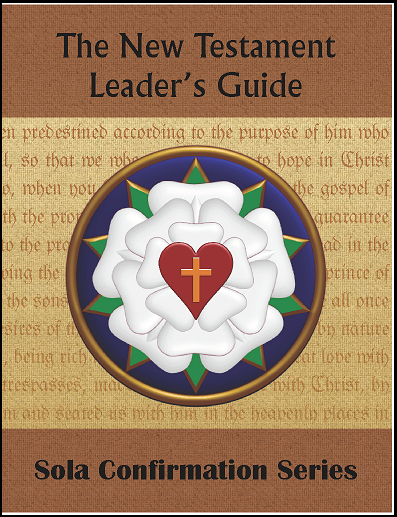 The New Testament (Leader's Guide)