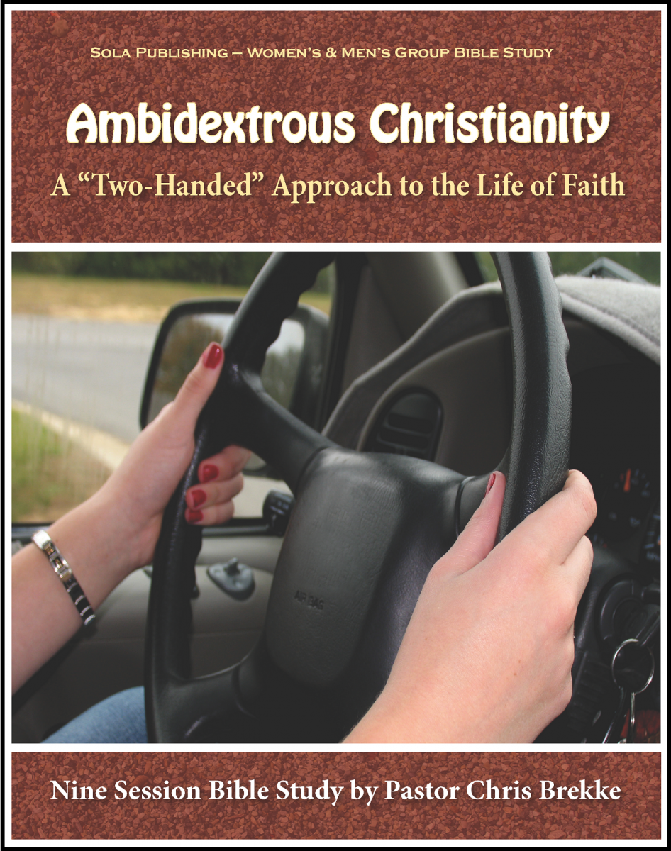 Ambidextrous Christianity - Participant