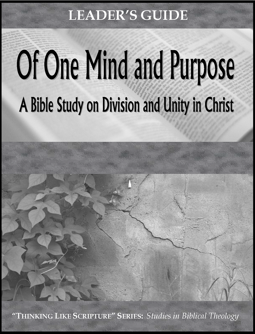 Of One Mind and Purpose - Leader