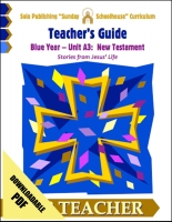 A3 Teacher's Guide: Download Version S-A335